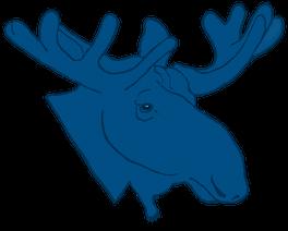 Blue Moose Publishing